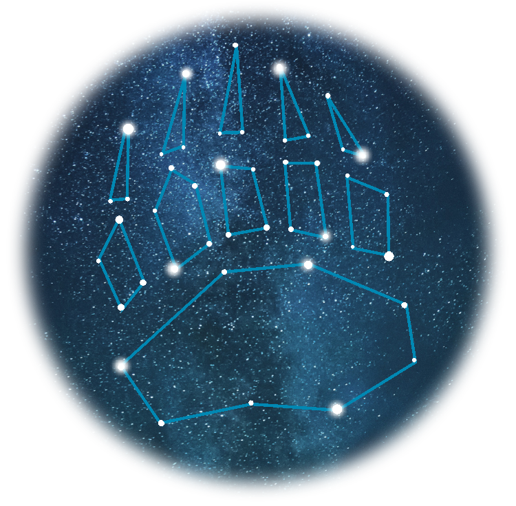Grizzly Paw Constellation