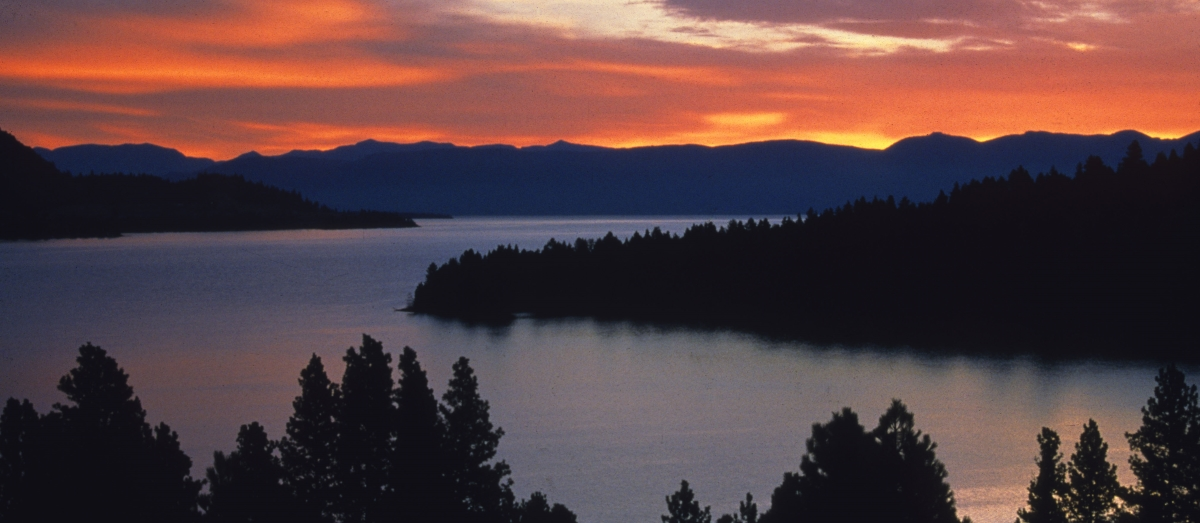 On Thursday, July 23, the University of Montana is headed to Flathead Lake for a gathering with alumni and friends. Check back for more updates!