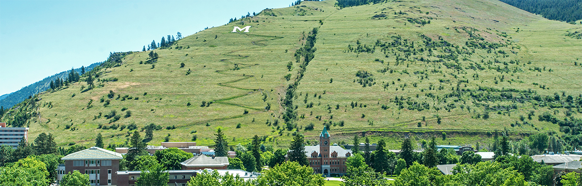 Picture of University of Montana campus and Mount Sentinel in summer