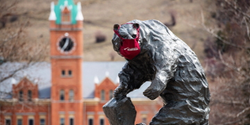 Photo of the bear statue on the Oval with a mask on its face